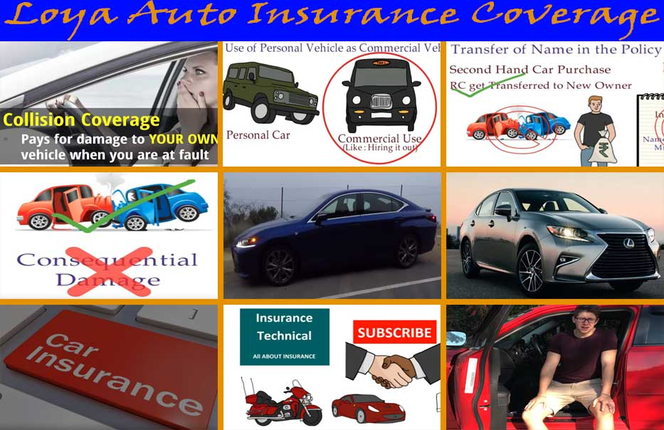 loya auto insurance coverage