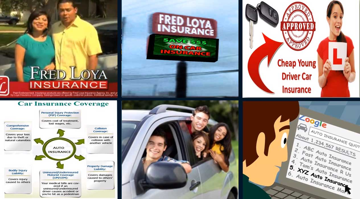 Loya Insurance Quotes